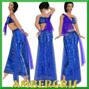 Dark Blue Sari